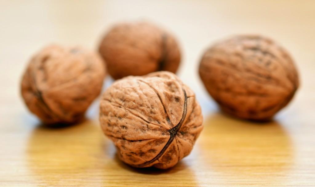 walnuts-552975_1920